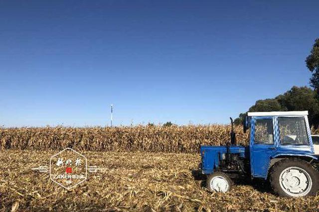 冰城秋收近半 10月20日前力争收完水稻、大豆