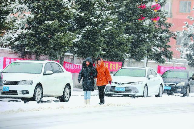 """迎入秋后最大一场雪雪深超10厘米 漠河一夜变""""雪国"""""""