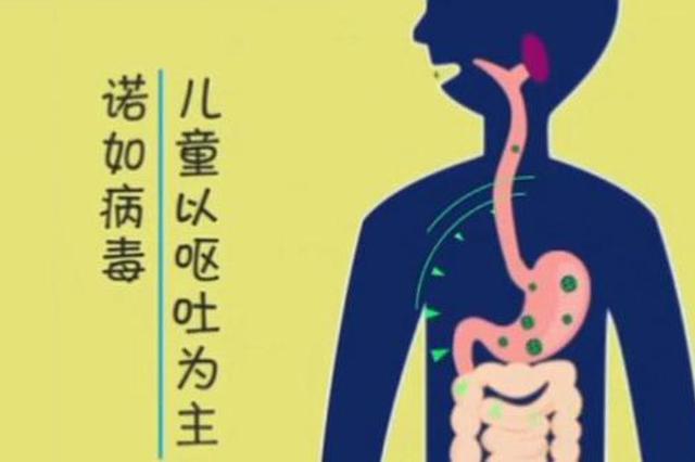 哈疾控发布诺如病毒提醒:目前没有疫苗 做好这些是关键