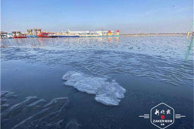 江面结冰啦 松花江已跑起冰排