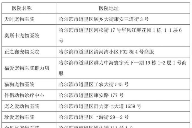 给狗狗办证看过来!哈尔滨市共设立26处犬只办证网点