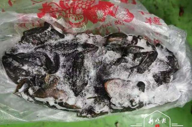 黑龙江警方破获非法捕猎、运输濒危野生动物案