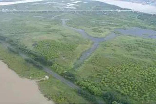 """好消息!黑龙江又有两处湿地公园入选""""国家队"""""""