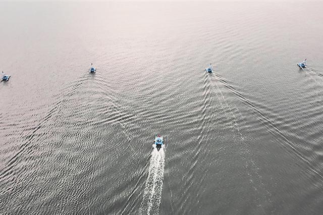 """全国首次!哈工程海洋机器人""""列队出征"""""""