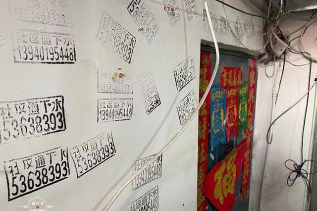 哈市人和街5号13个单元被频繁贴小广告,最多一户贴了40个