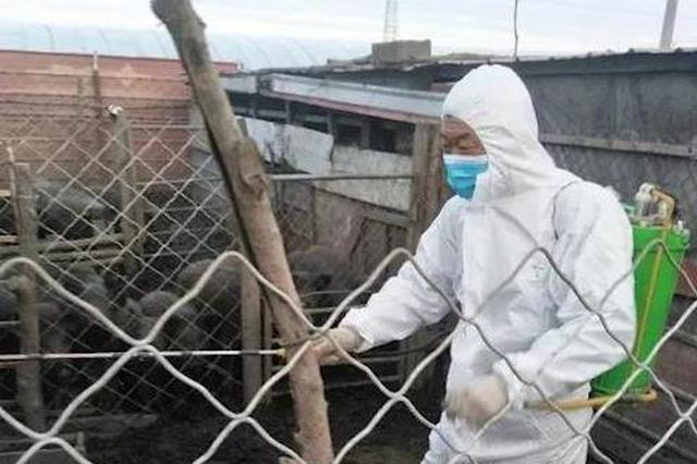 为期一个月!黑龙江省开展全省动物防疫清洗消毒活动