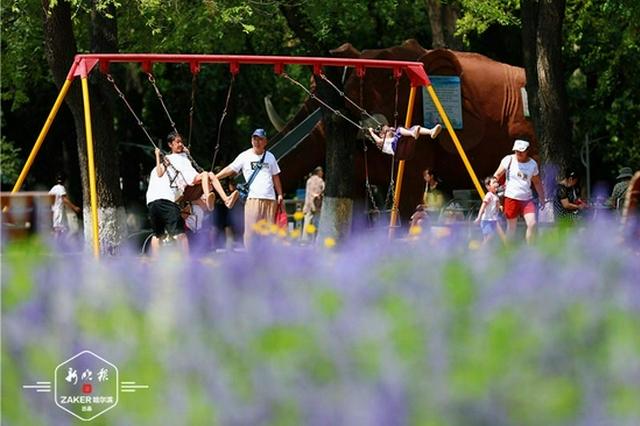 荡秋千、玩攀爬架……暑假中的儿童公园成了欢乐的海洋