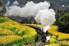 这里有美翻了的蒸汽小火车!