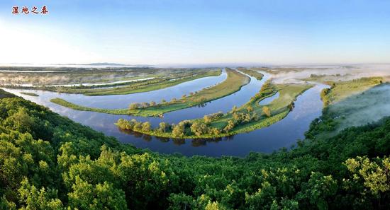 图赏珍宝岛湿地景区