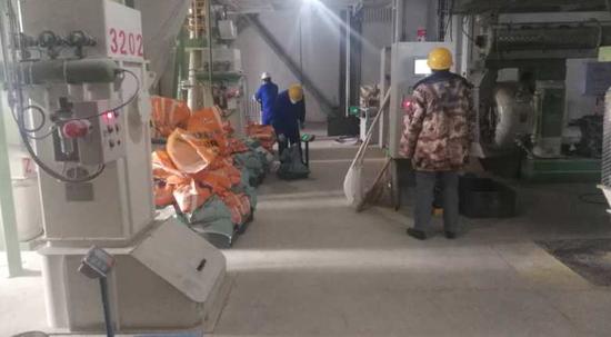 铁力市金新农生猪养殖项目有序推进
