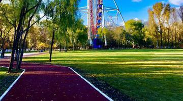 文化公园运动场新跑道投入使用