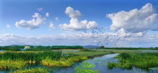佳木斯富锦国家湿地公园
