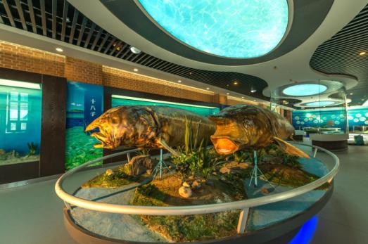 鱼文化博览馆