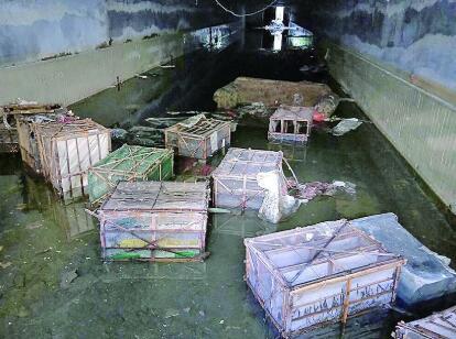 地下室被淹