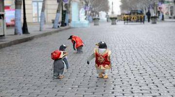 逃学企鹅一家三口逛中央大街