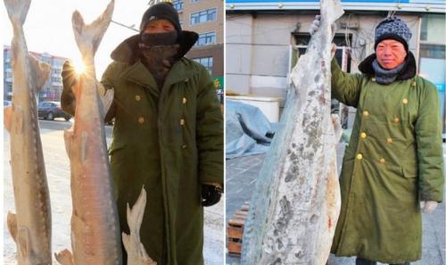 东北最大的冻鱼市场