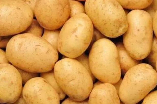 黑龙江省地产土豆要有新品种 皮薄坑浅好打皮