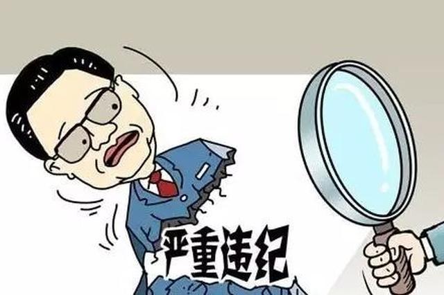 哈尔滨市双城区原副区长武传刚被开除党籍和公职