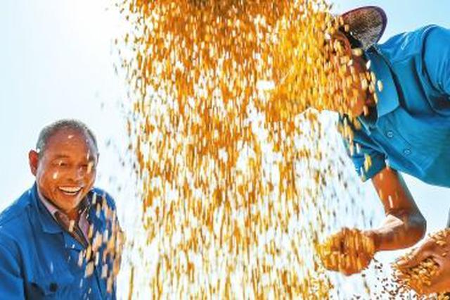 黑龙江农民人均收入实现近三年最快增速