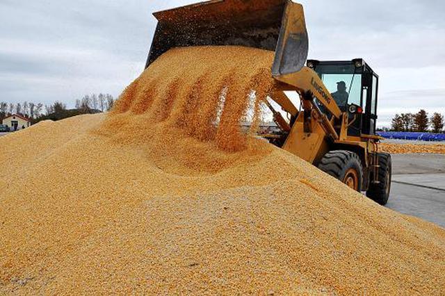 黑龙江省粮食产能不断提升 连续7年居全国首位