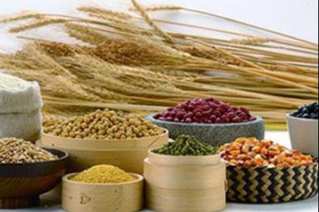 哈尔滨市7家粮油企业入选国家粮食局重点支持名单