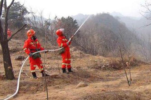 哈尔滨市政府发布森林防火令 3月15日进入春季防火期