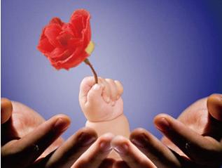 优于全国平均水平 黑龙江婴儿死亡率5年下降2.89‰