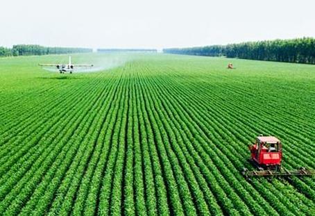 """大庆建57处""""互联网+""""农业示范基地 让农户成"""""""