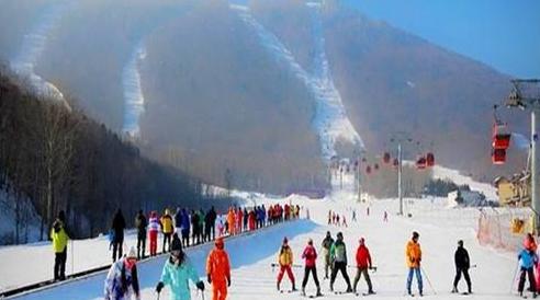 南方游客春节组团来哈玩冰雪 亚布力每天迎上万雪友