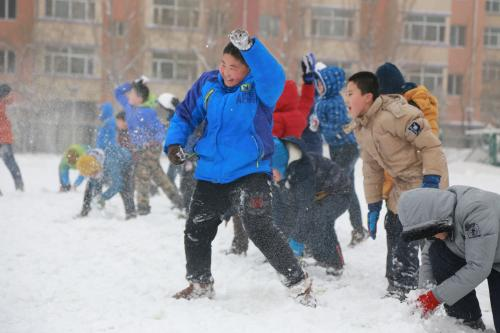 哈师范附小两千多平方米冰场让家长和孩子们玩成一片