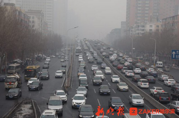 雾锁冰城!市区能见度降低 哈同哈牡多条高速限行