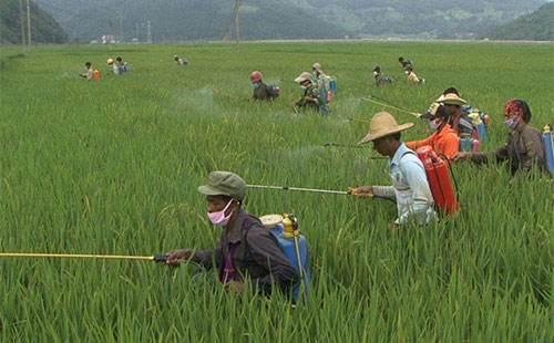 岳阳七旬男子带着农药去离婚 过安检时被发现