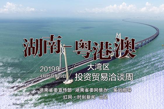 2019湖南-粤港澳大湾区投资贸易洽谈周