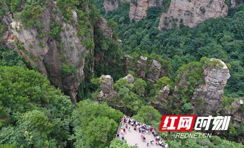 8月10日,游人欣赏杨家界峰墙(吴勇兵 摄)