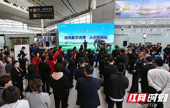 """4月16日,长沙海关在长沙黄花国际机场国际出发厅举办""""拒绝象牙消费,从你我做起""""新闻发布会暨公益宣传活动。"""