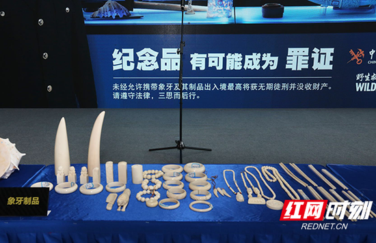 长沙海关共查获的象牙印章、吊坠、手镯、手链、项链等。