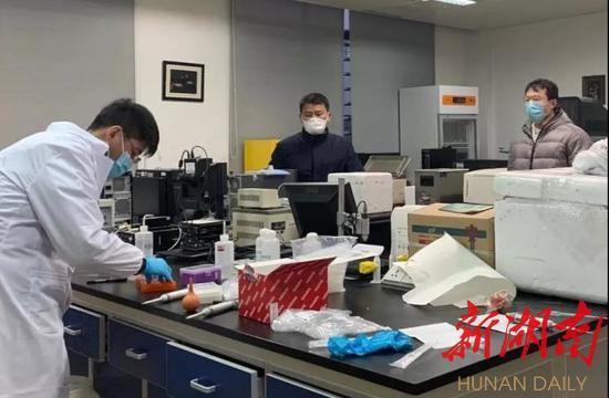 """(谭蔚泓院士团队主持研发""""家庭简易式新型冠状病毒感染检测技术与试剂盒"""",已开展临床试验。资料图片)"""