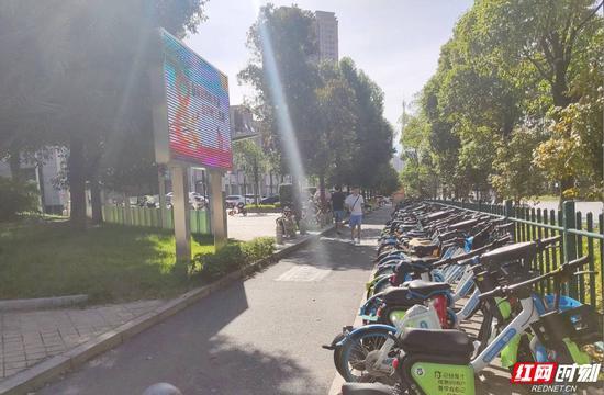 龙塘路共享单车停放整治后的样子。