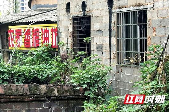 小作坊隐藏在牛角塘村一片居民区内。