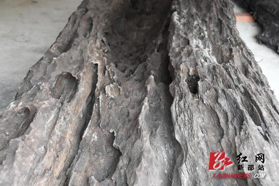 阴沉木表面。