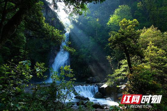 神农谷珠帘瀑布。