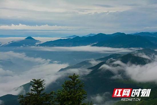 云雾缥缈的武冈云山。刘志军 摄