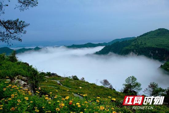 黄岩生态旅游区涌动的云海。景区供图