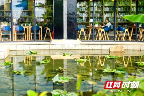 湘府馆周边阅读环境淡雅幽静。