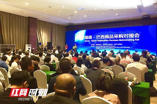 11月7日,首届中国国际进口博览会湖南分团专题活动——湖南巴西商品采购对接会在上海举行。