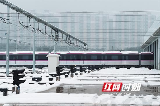 地铁1号线的线路色是中国红,2号线是天空蓝,4号线则是浪漫的紫色。