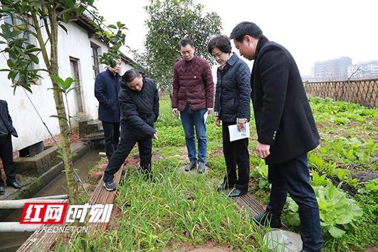 程丽华(右二)在横冲村了解农村改厕情况。