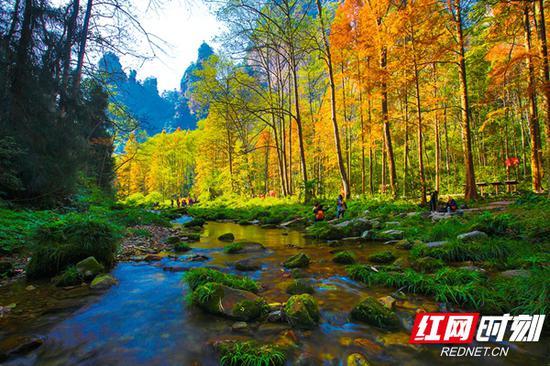 86版《西游记》取景地——金鞭溪。