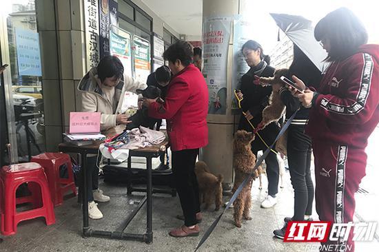 ?#29992;?#25490;队等待为爱犬注射狂犬疫苗。