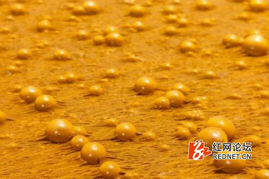 靠近了看,金色的泡泡颜色好纯粹。(网友供图)